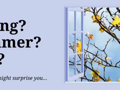 open window to flowering spring tree