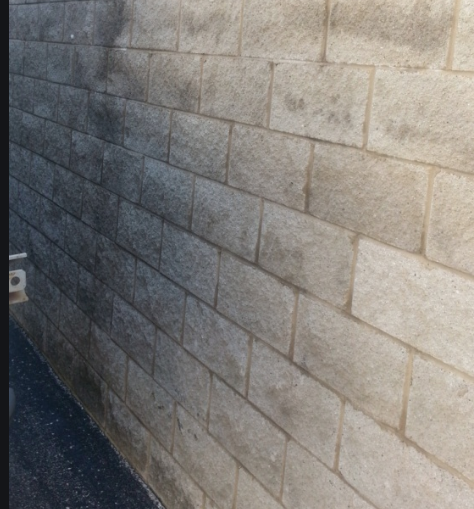 split face block wall showing moisture and mold
